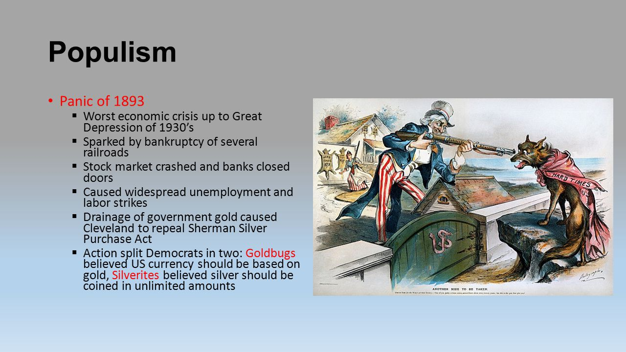 Populism Panic of 1893. Worst economic crisis up to Great Depression of 1930's. Sparked by bankruptcy of several railroads.