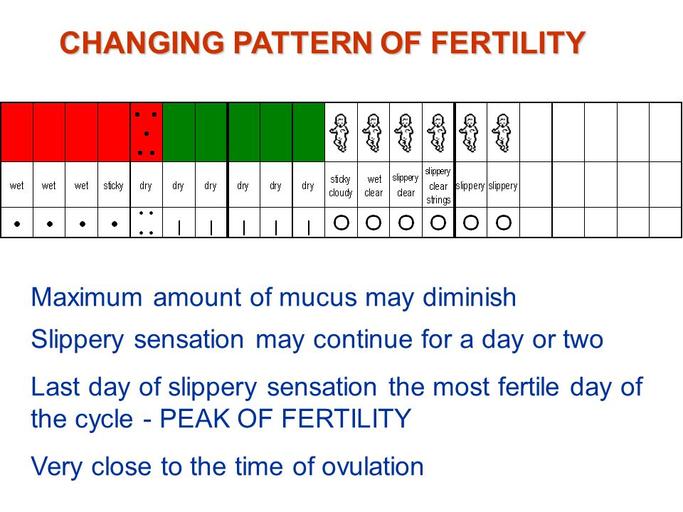 CHANGING PATTERN OF FERTILITY