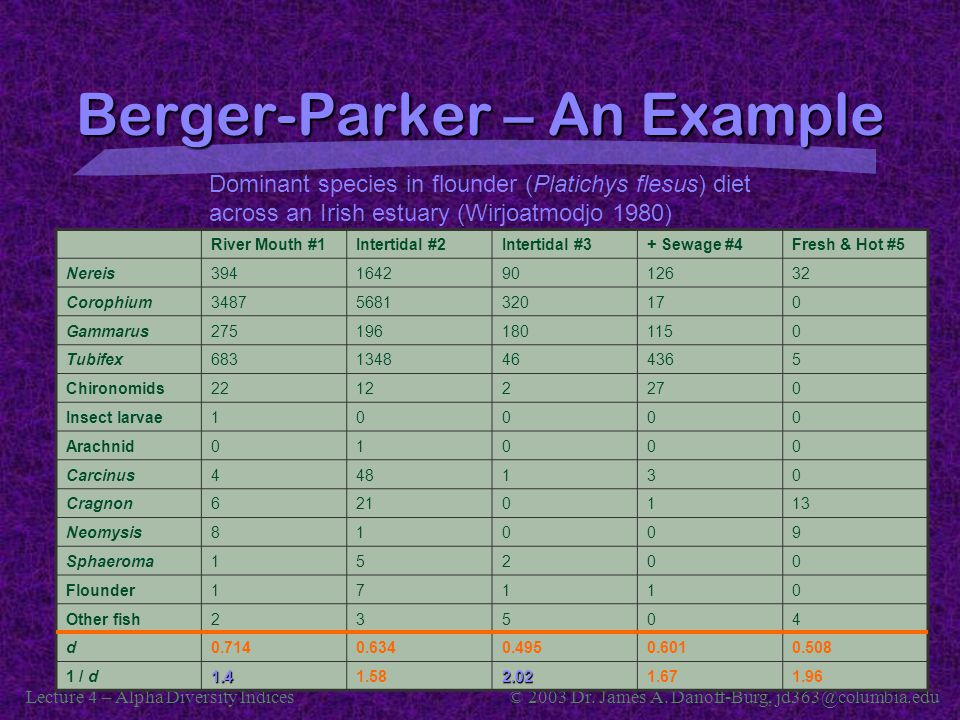 Berger-Parker – An Example