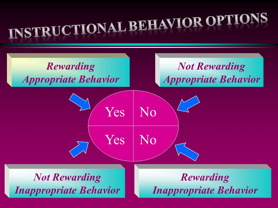 Instructional Behavior options