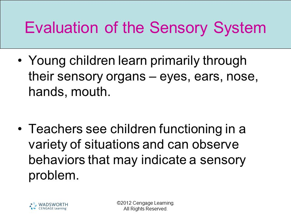 Evaluation of the Sensory System