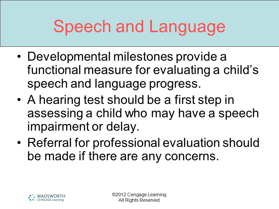 Speech and Language Developmental milestones provide a functional measure for evaluating a child's speech and language progress.