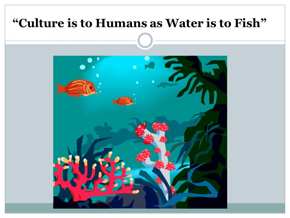 Culture is to Humans as Water is to Fish