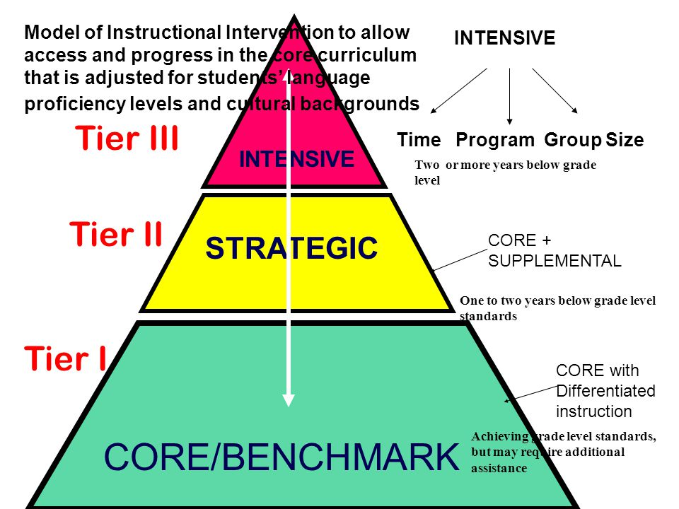 CORE/BENCHMARK Tier III Tier II Tier I STRATEGIC INTENSIVE