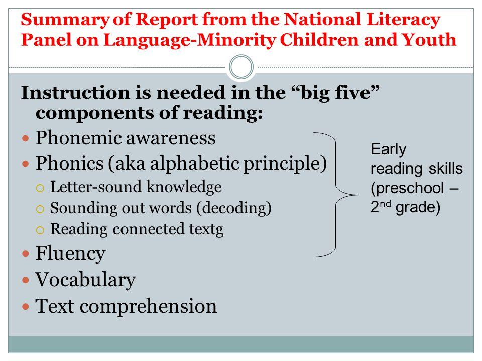 Fluency Vocabulary Text comprehension Phonemic awareness