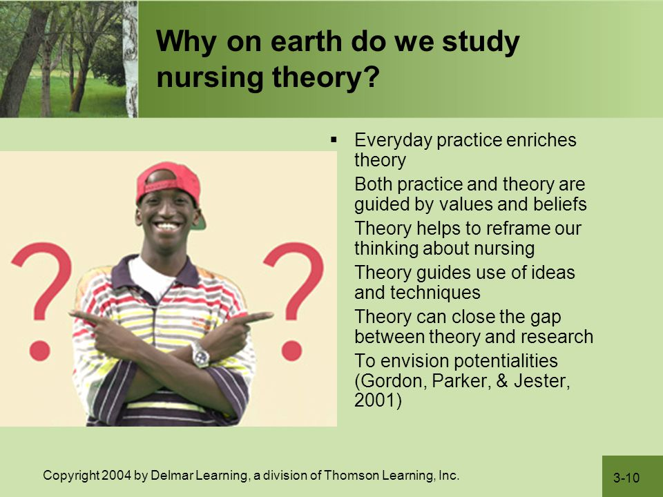 Why on earth do we study nursing theory
