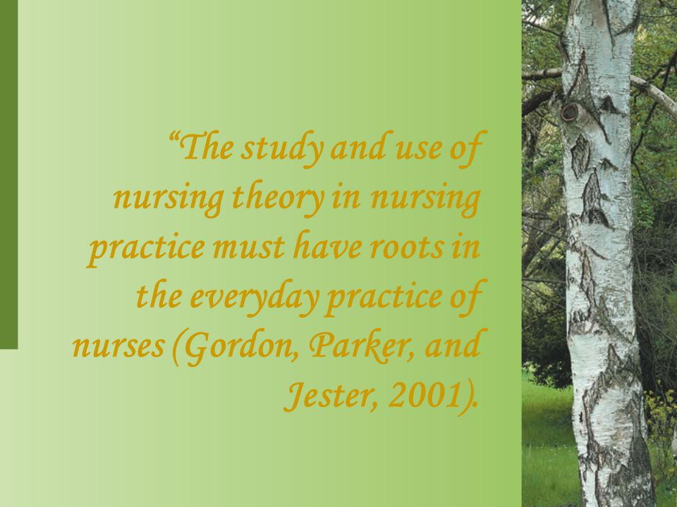 The study and use of nursing theory in nursing practice must have roots in the everyday practice of nurses (Gordon, Parker, and Jester, 2001).