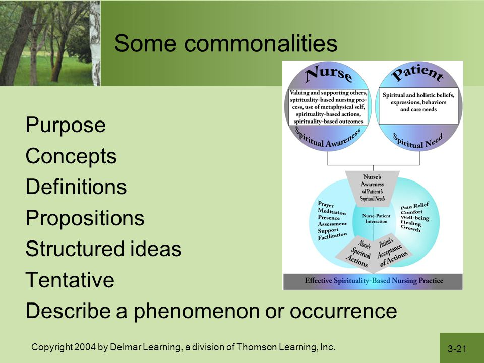 Some commonalities Purpose Concepts Definitions Propositions