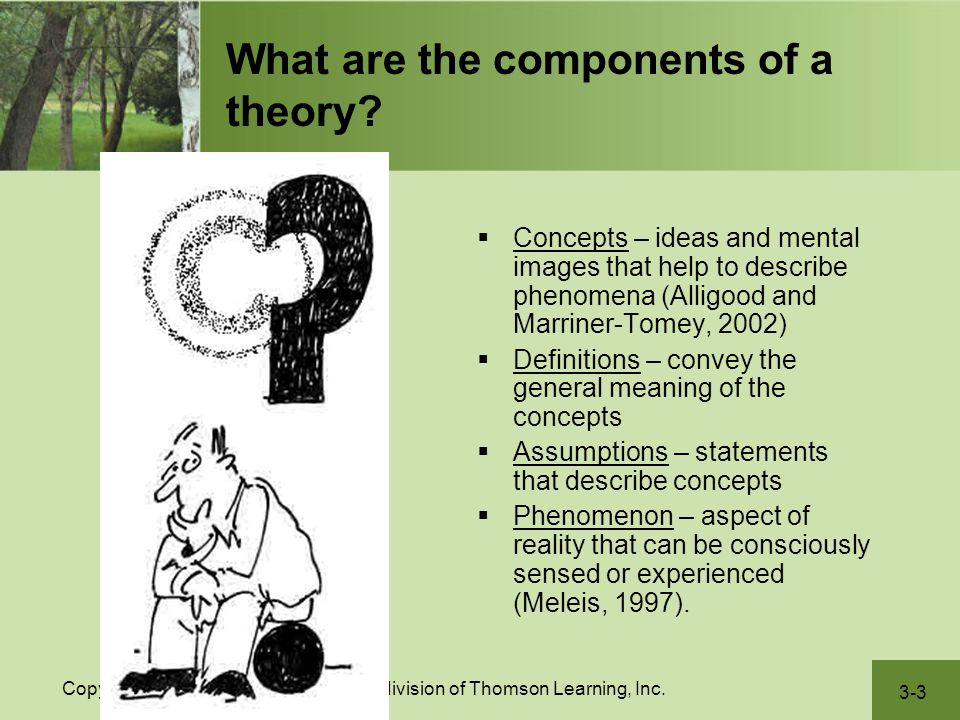 What are the components of a theory