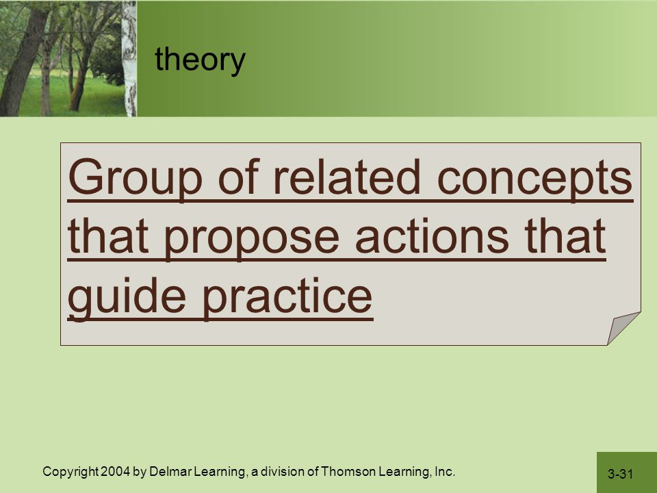 Group of related concepts that propose actions that guide practice