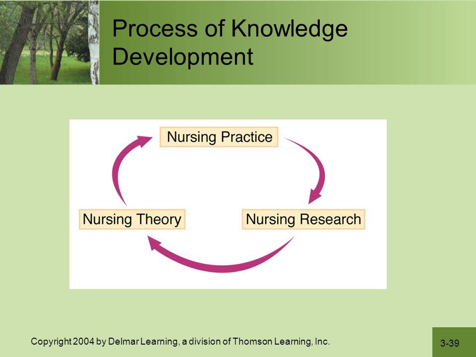Process of Knowledge Development