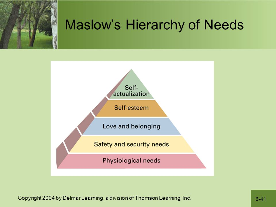 nursing care plan maslow s hierarchy of needs Maslow's hierarchy of needs college of lake county healthcare bridge curriculum introduction to health care.