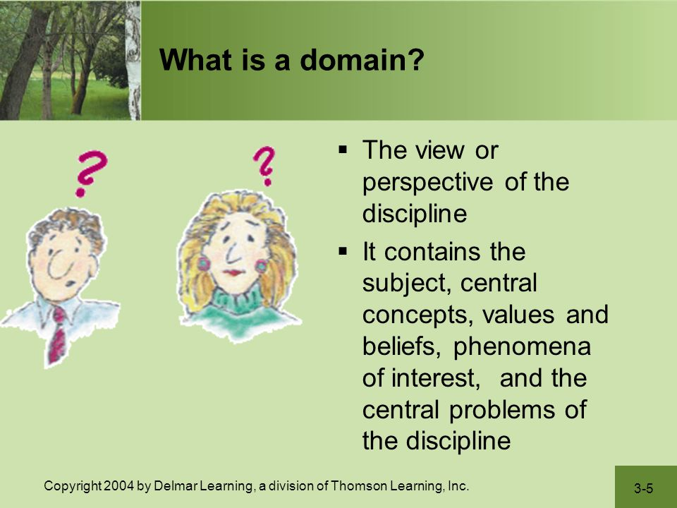 What is a domain The view or perspective of the discipline