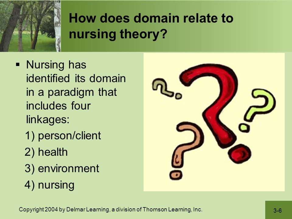How does domain relate to nursing theory