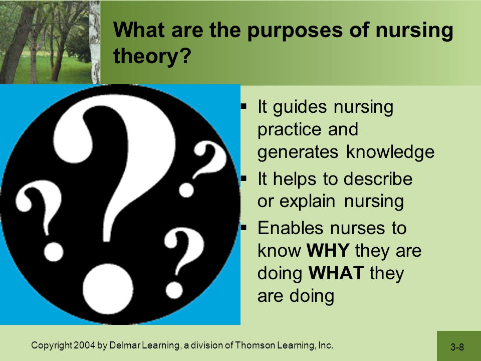 What are the purposes of nursing theory