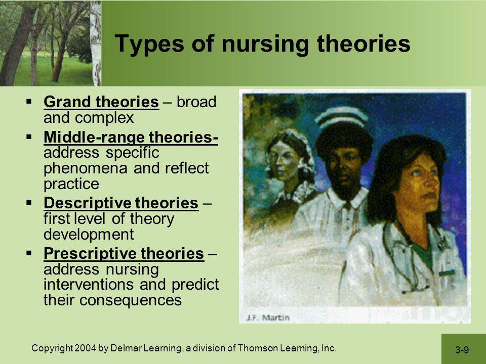 reflection about nursing theories Nurs 208 chpt 4 nclex questions nursing relies on knowledge gained from practice and reflection on past nursing theories focus on the phenomena of.