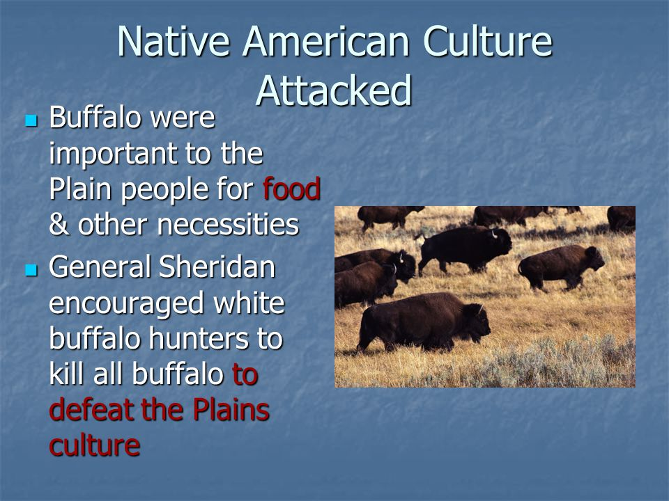 Native American Culture Attacked