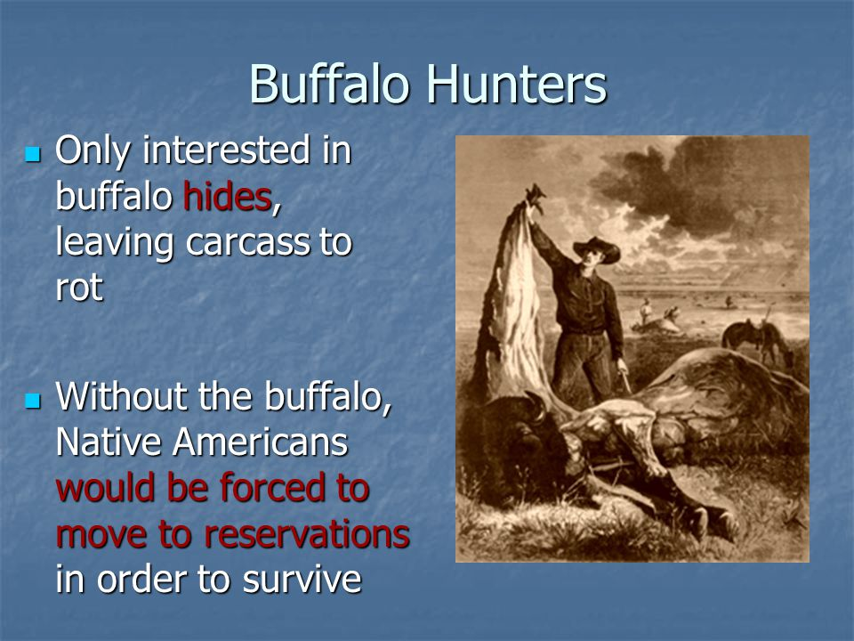 Buffalo Hunters Only interested in buffalo hides, leaving carcass to rot.