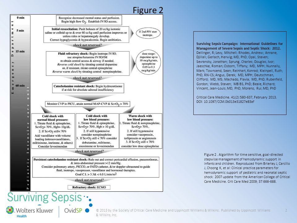 Figure 2 Surviving Sepsis Campaign: International Guidelines for Management of Severe Sepsis and Septic Shock: 2012.