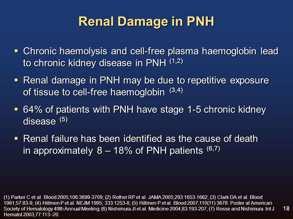 Renal Damage in PNH Chronic haemolysis and cell-free plasma haemoglobin lead to chronic kidney disease in PNH (1,2)