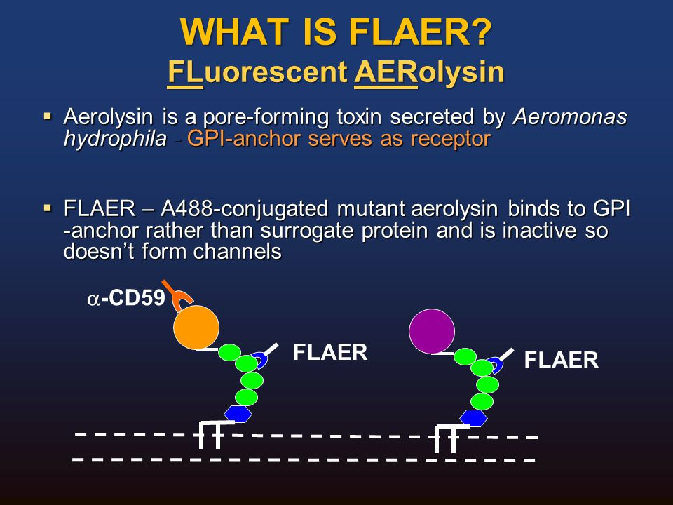 WHAT IS FLAER FLuorescent AERolysin