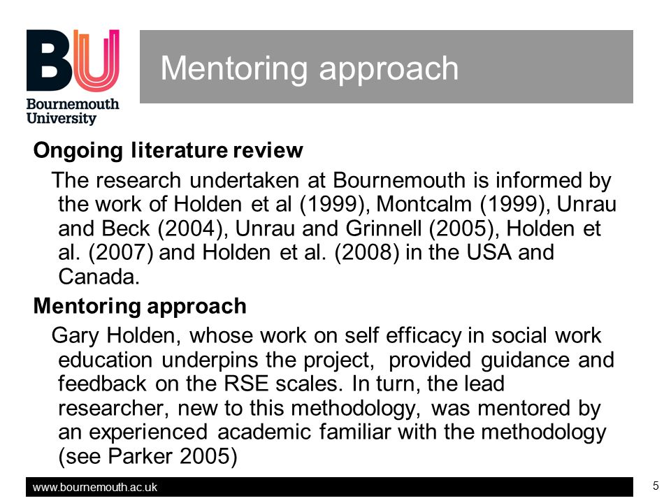 Mentoring approach Ongoing literature review