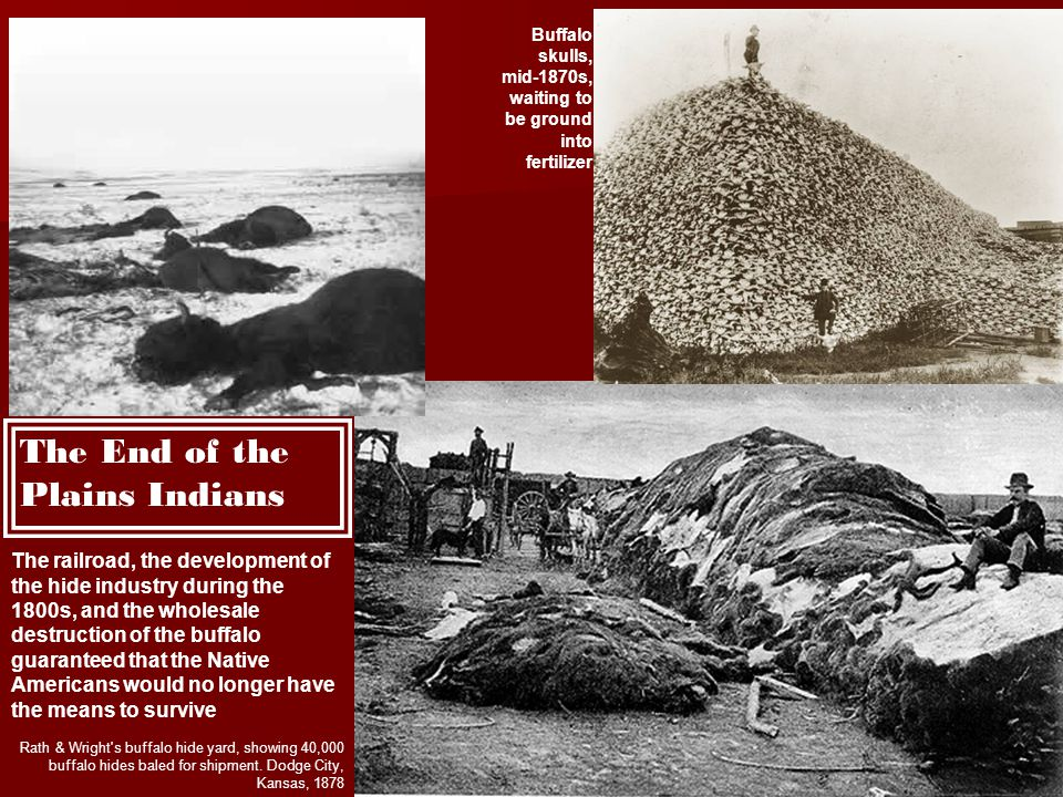 The End of the Plains Indians