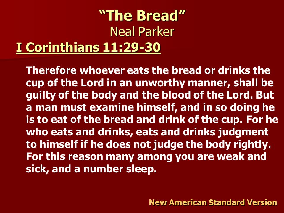 The Bread Neal Parker