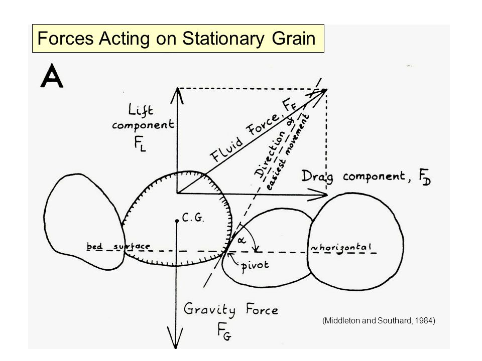 Forces Acting on Stationary Grain