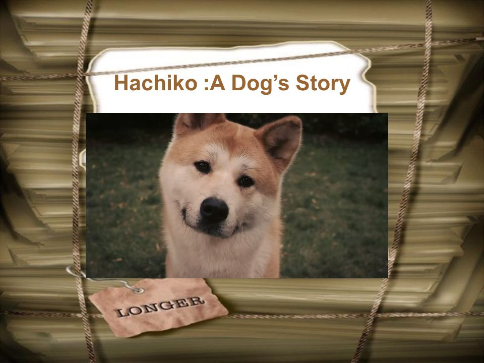 Hachiko :A Dog's Story