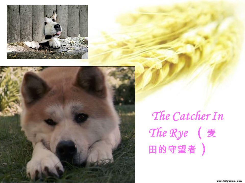 The Catcher In The Rye (麦田的守望者)