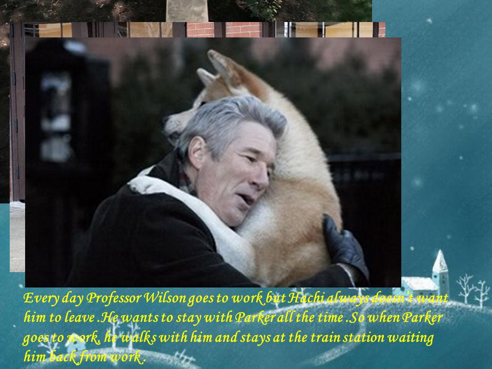 Every day Professor Wilson goes to work but Hachi always doesn't want him to leave .He wants to stay with Parker all the time .So when Parker goes to work, he walks with him and stays at the train station waiting him back from work .