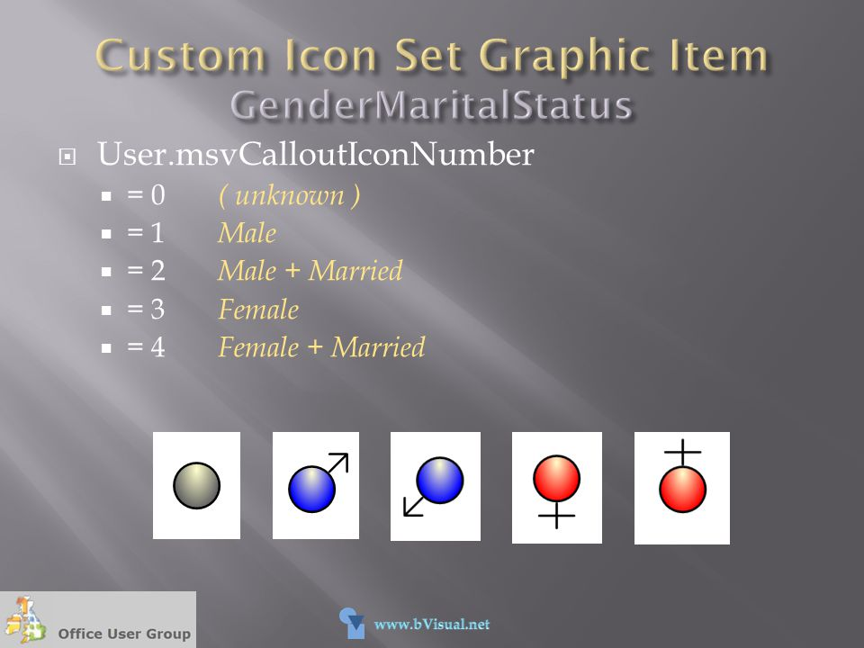 Custom Icon Set Graphic Item GenderMaritalStatus