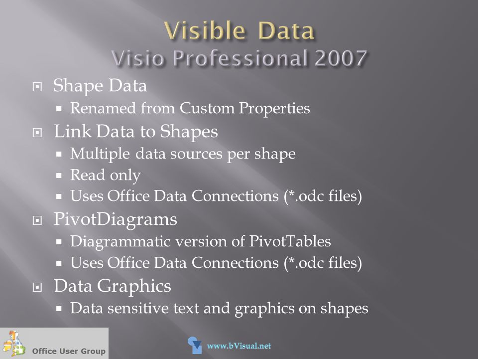 Visible Data Visio Professional 2007