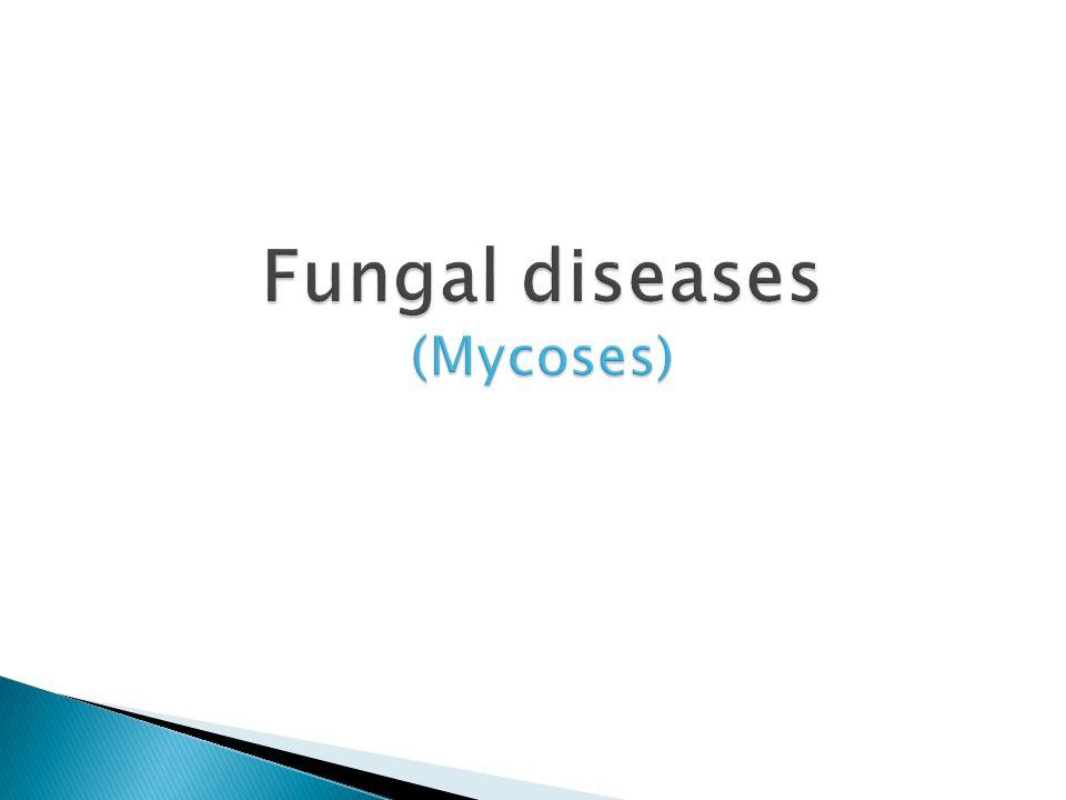 Fungal diseases mycoses ppt video online download toneelgroepblik Gallery