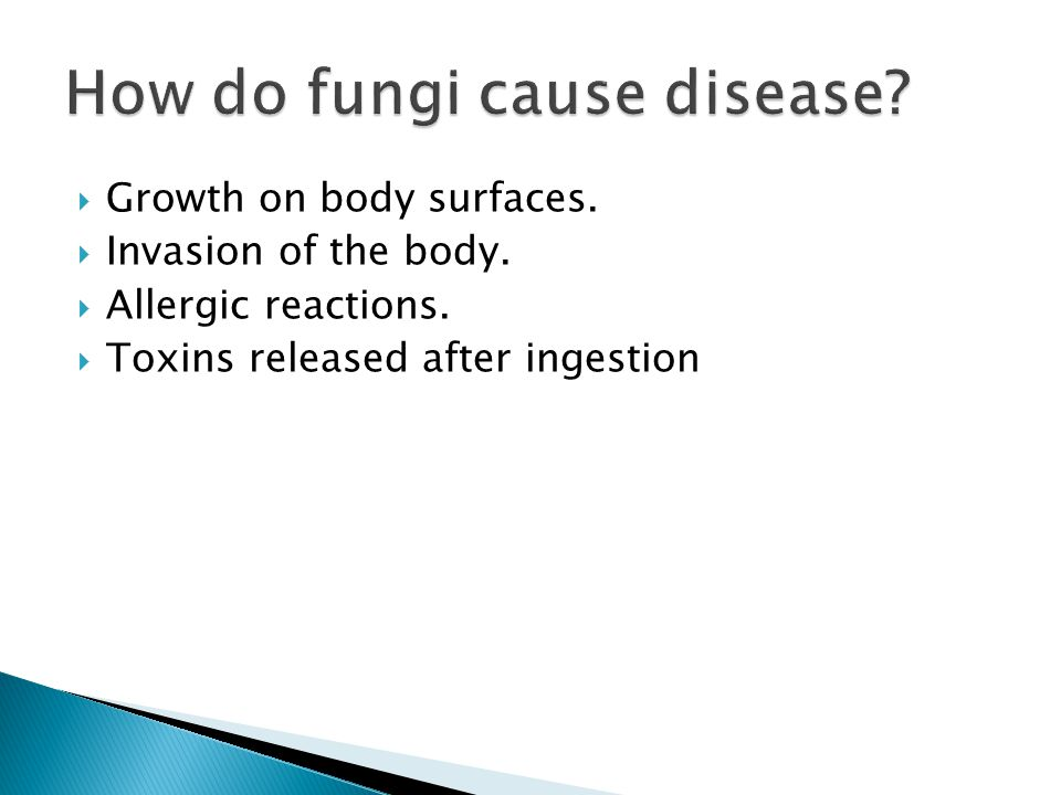 How do fungi cause disease