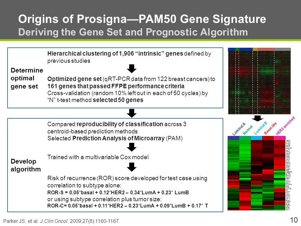 Origins of Prosigna—PAM50 Gene Signature Deriving the Gene Set and Prognostic Algorithm