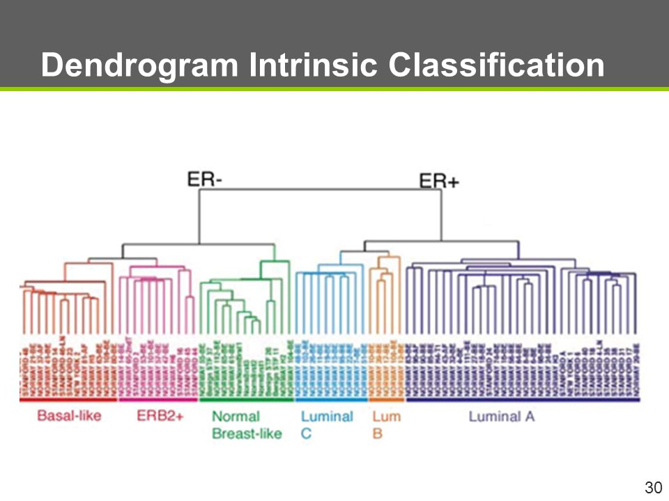 Dendrogram Intrinsic Classification