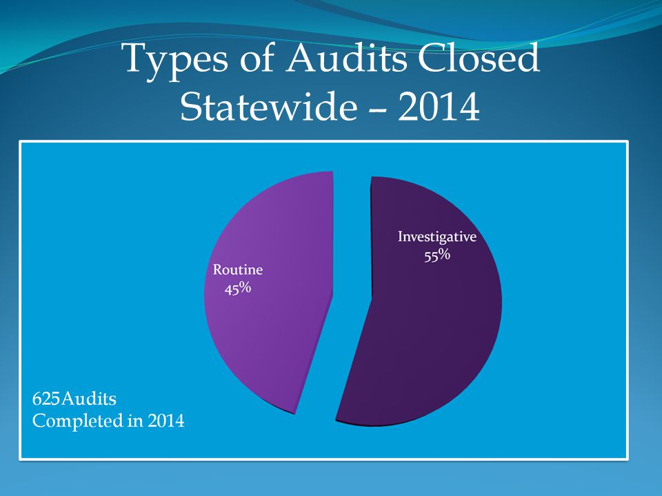 Types of Audits Closed Statewide – 2014