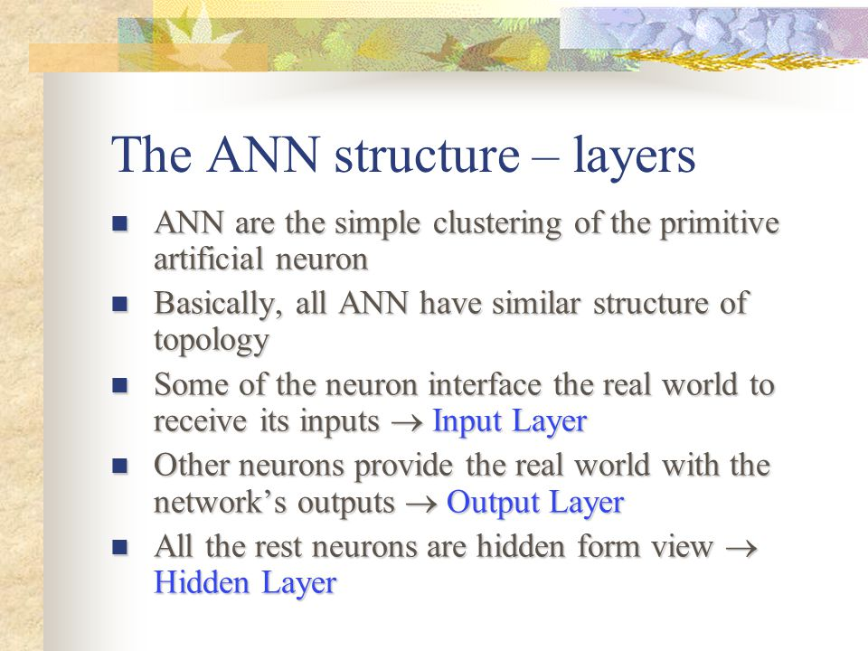 The ANN structure – layers