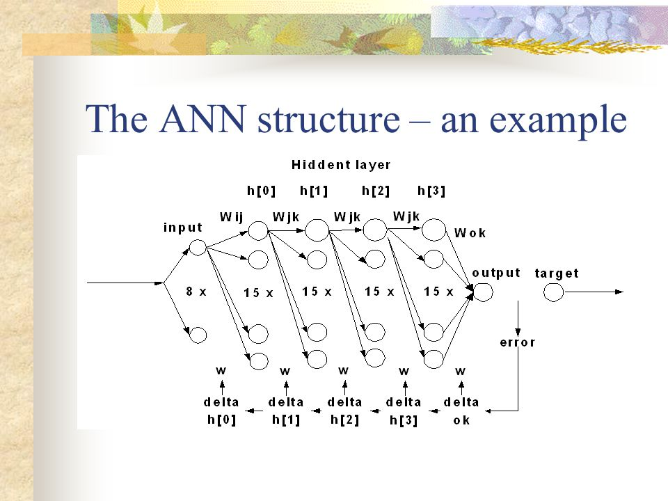 The ANN structure – an example