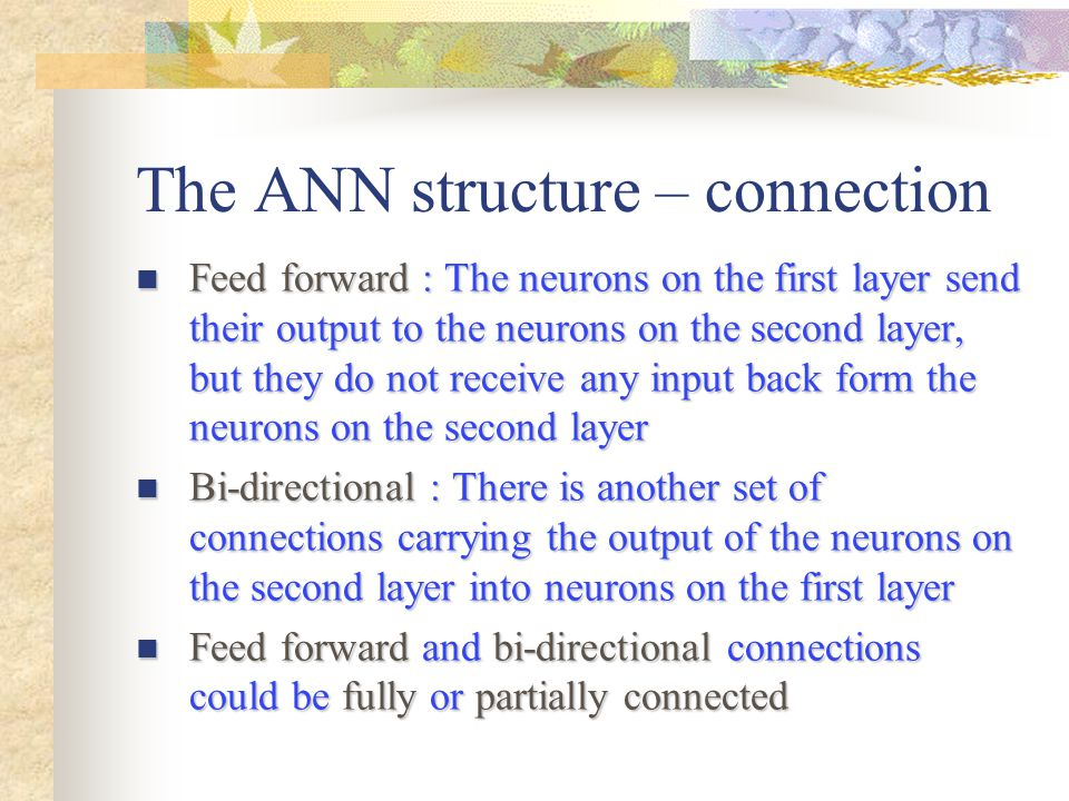 The ANN structure – connection