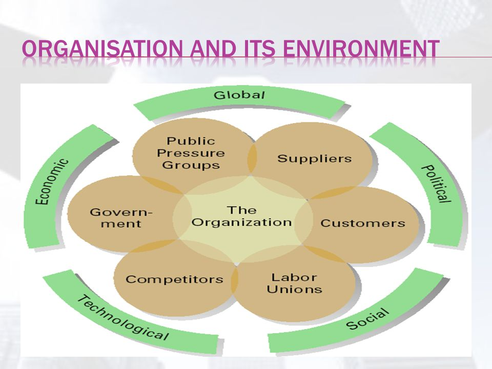 Organisation and its environment
