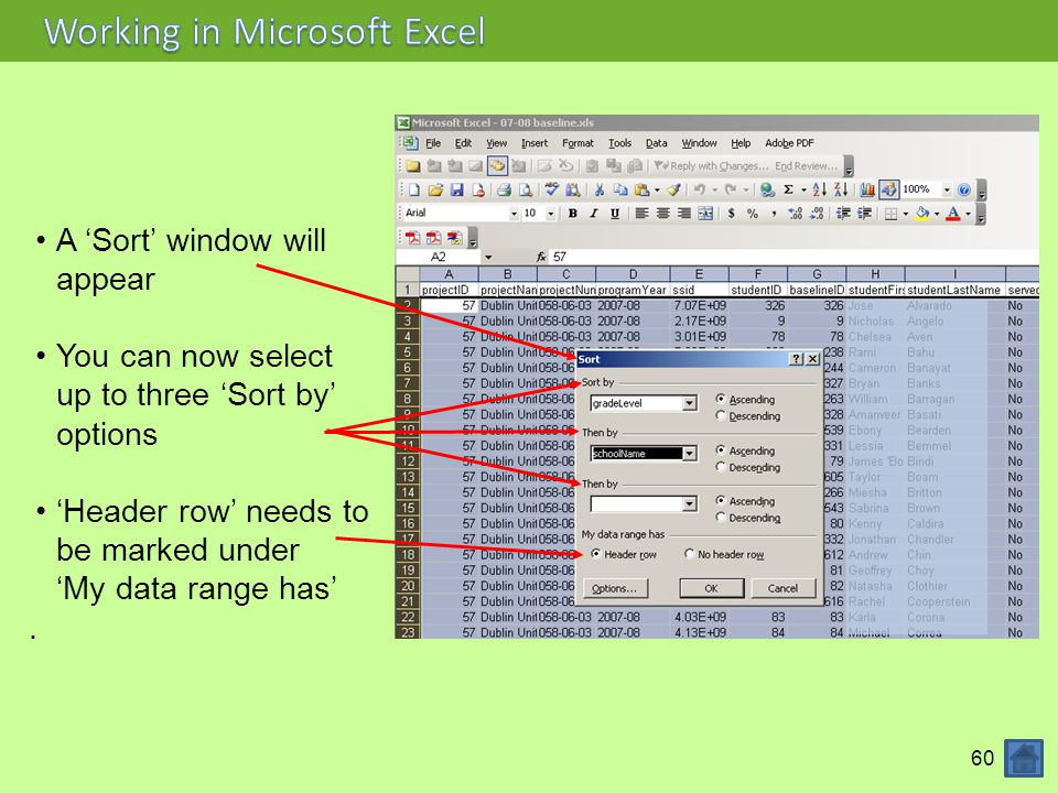 Working in Microsoft Excel