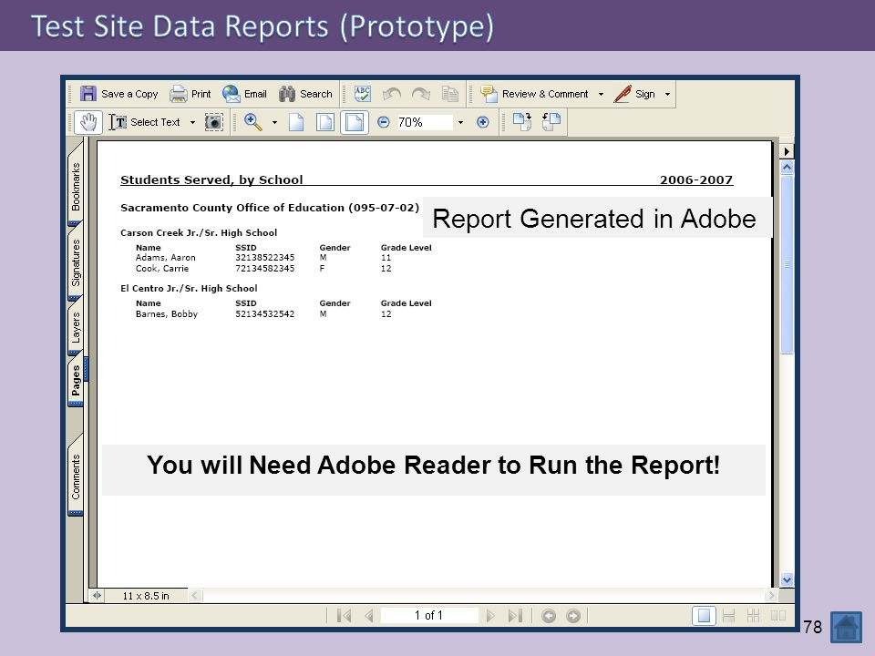 You will Need Adobe Reader to Run the Report!