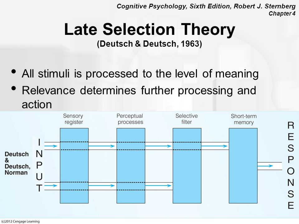 Late Selection Theory (Deutsch & Deutsch, 1963)