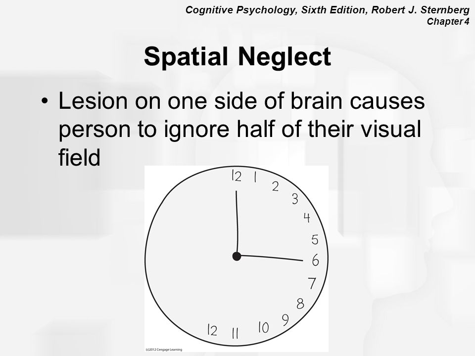 Spatial Neglect Lesion on one side of brain causes person to ignore half of their visual field.
