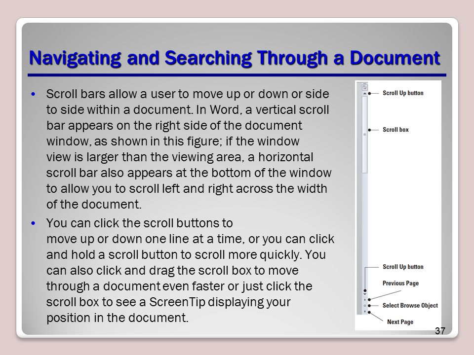Navigating and Searching Through a Document