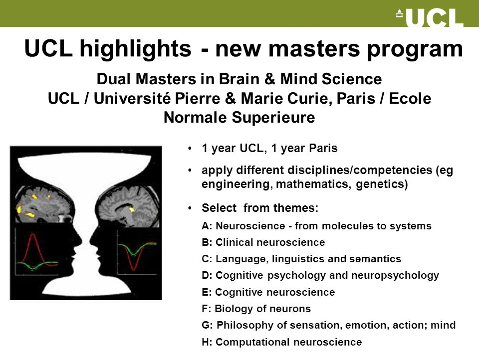 UCL highlights - new masters program