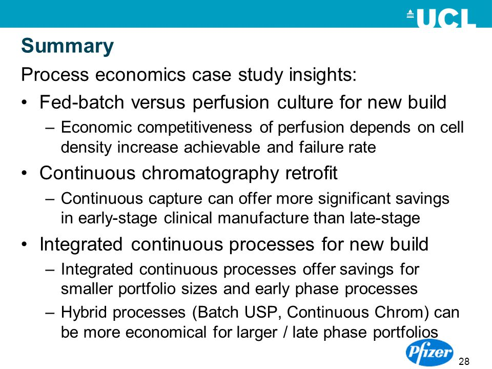 Summary Process economics case study insights:
